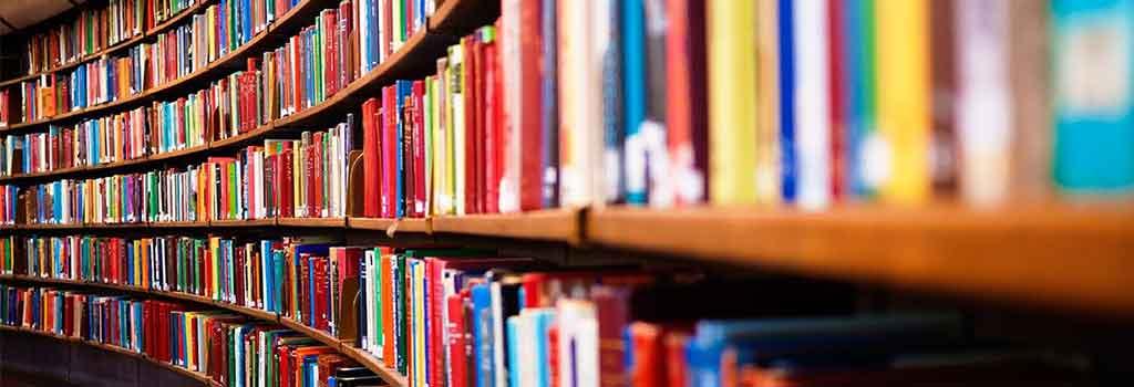 Сочинение ЕГЭ – Проблема разносторонности читательских интересов по тексту А.Н. Чирвы